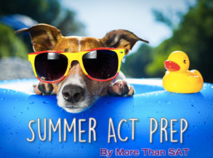 Feature Image - Summer ACT